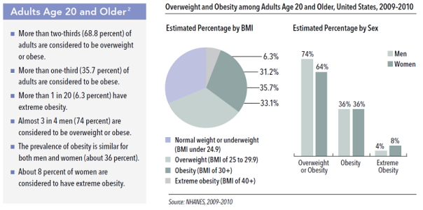 adult-obesity-stats-2010