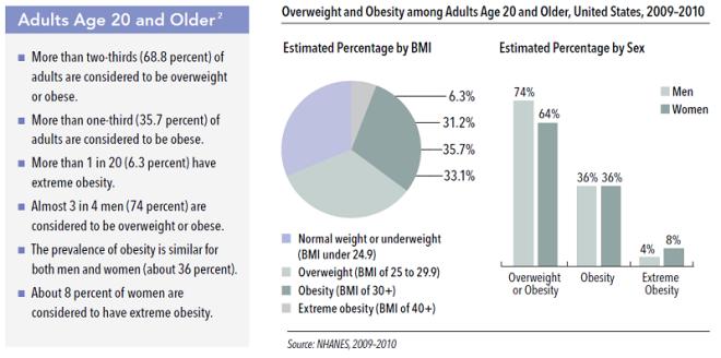 adult-obesity-stats-2010